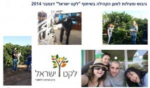 פעילות למען הקהילה - לקט ישראל  - 2014